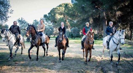 andalucian_riding_holidays_pureandalusia