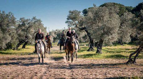 equestrian_tours_andalusia_pureandalusia