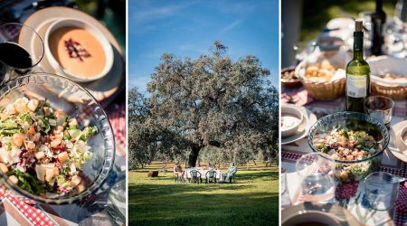 countryside_tour_lunch_pureandalusia
